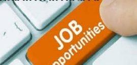DSSSB भर्ती 2017 अधिसूचना, DSSSB Recruitment 2017
