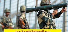 बीएसएफ हेड कांस्टेबल रिक्ति 2019 (BSF Head Constable Recruitment 2019)
